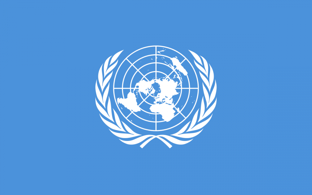 Recent Transfer Pricing Developments: the United Nations perspective – Rome 04.09.14